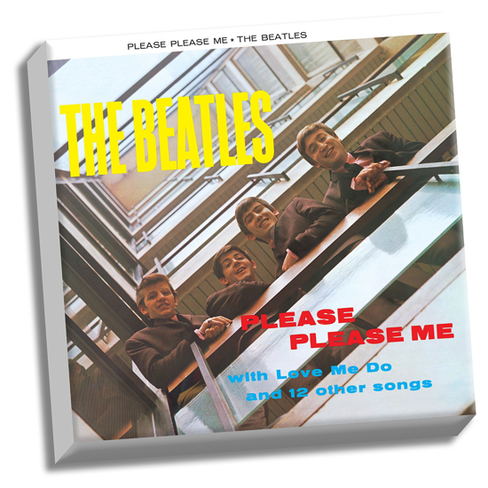 """Picture of Beatles ART: The Beatles Please Please Me 20"""" x 20"""" Stretched Canvas"""